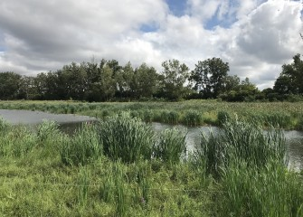 The Habitat Restoration Plan, released in 2010, described  a comprehensive approach to Onondaga Lake's revitalization.