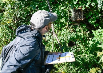 Volunteers take part in citizen science monitoring. Rich Jarrett, of Liverpool, opens, inspects and records the contents of a previously installed nesting box along the Western Shoreline. After, the box is cleaned out for use by birds next breeding season.