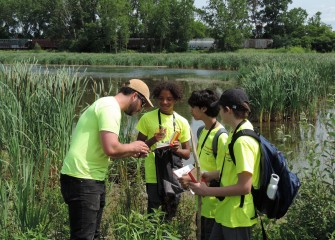 Jim Molloy, associate scientist at Parsons, shows (left to right) Anthony Williams, Suhaib Fakhr and Gabriel Rohlin how to tell the difference between sedges and rushes.