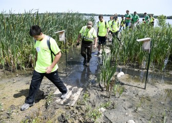On Honeywell Day, students tour wetlands created as part of the Onondaga Lake cleanup.